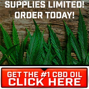 Optimal Choice Hemp Oil - New Cannabidiol Oil | Product Review
